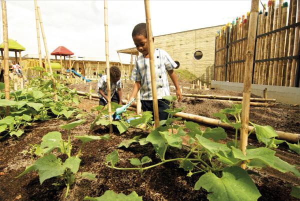 Escola-em-Bambu-horta-e1411120051236