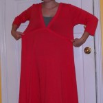 Day 76: An Early Fall Frock