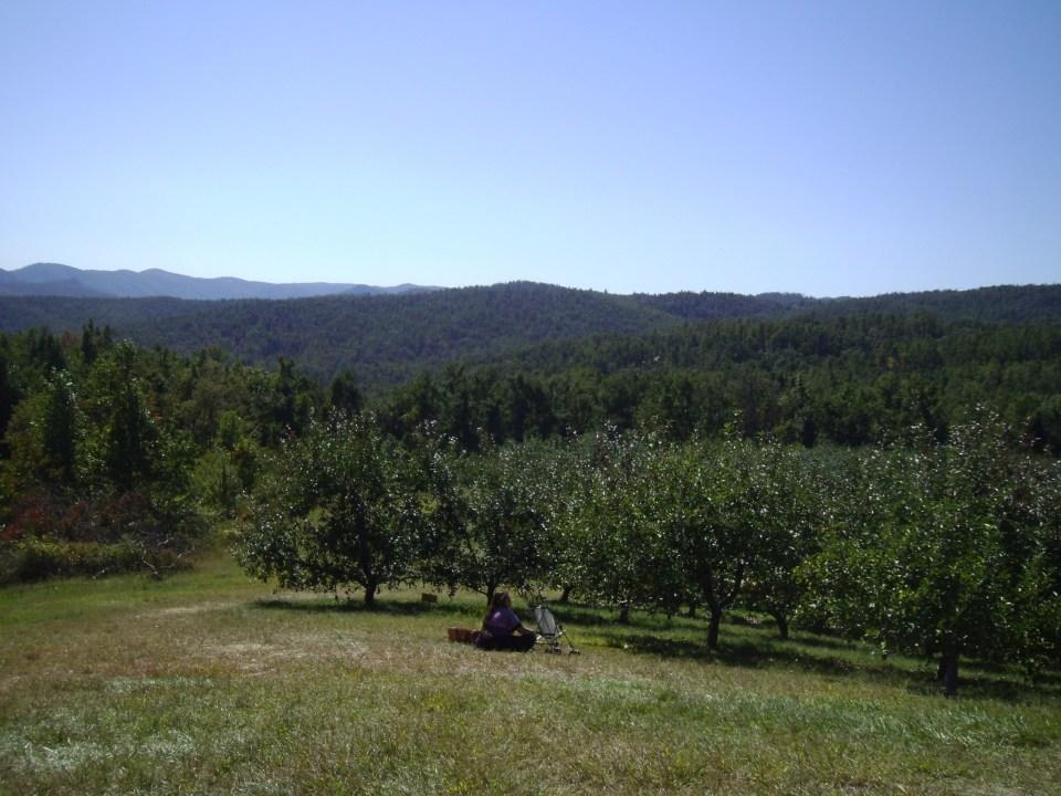 Day 95:  Apple Orchard Frumpy Collared Dress Refashion 10