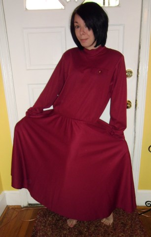 Day 177: Cranberry Sauce Dress 2