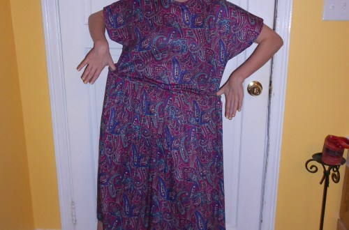 Day 257:  Paisley Park Dress 30