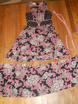 Day 258:  Ashes of Roses Dress 5