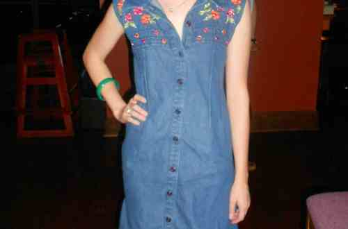 Day 345:  Denim Aversion Dress 4