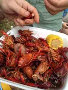Mmmmmm!  Those crawdads are good eatin'!  :)