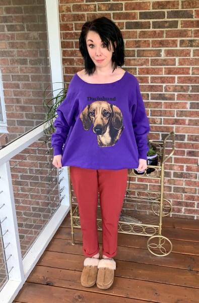 dachshund sweatshirt pre refashion