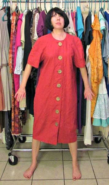 Mod Dress Refashion Before