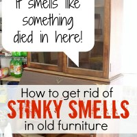 Amy's Awesome Furniture Deodorizing Tips
