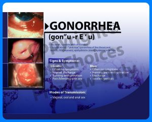 gonoree