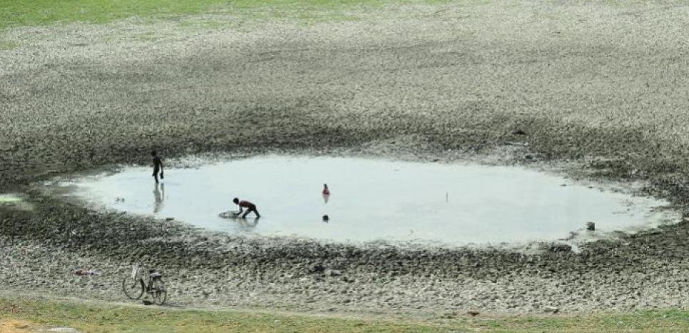 Des pêcheurs indiens tentent d'attraper du poisson dans un étang asséché dans le village de Phaphamau près d'Allahabad le 26 mai 2015 (c) Afp
