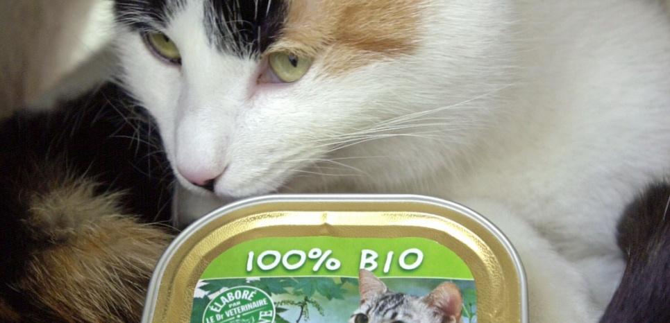 La nourriture industrielle pour animaux de compagnie s'inspire des tendances du marché pour l'homme, comme avec ces barquettes bio. ©MYCHELE DANIAU / AFP