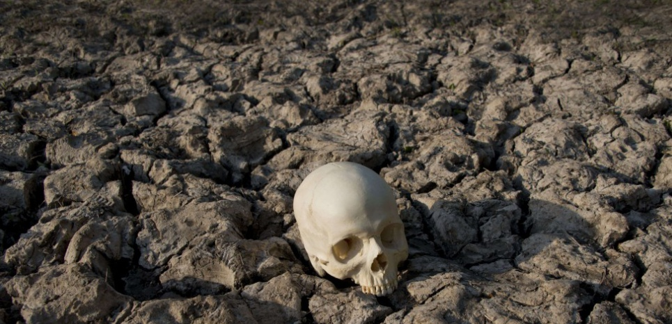 Un crâne sur un sol aride © Jones/REX Shutterstock/SIPA