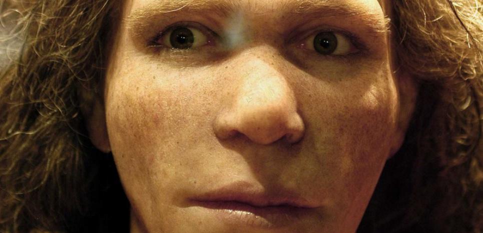 Une néandertalienne reconstituée à partir du crâne de Saint Césaire, Charente Maritime NOSSANT JEAN MICHEL/SIPA