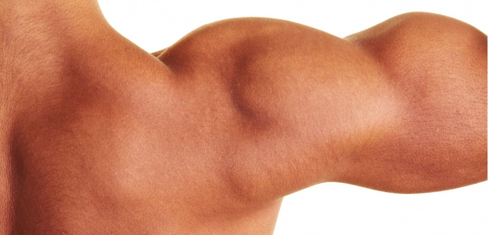 La sarcopénie, une diminution de la masse et de la force musculaire est une maladie due au vieillissement qui constitue un important facteur de chute chez les personnes âgées. ©SUPERSTOCK/SUPERSTOCK/SIPA