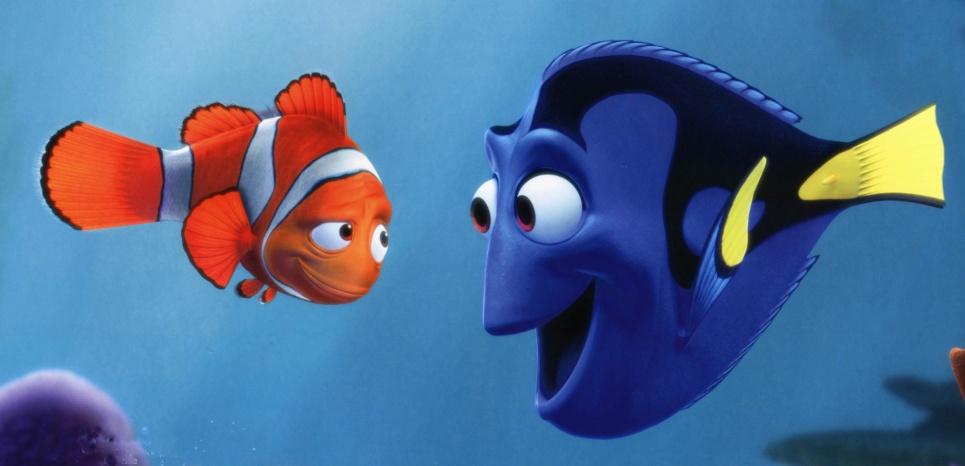 """Beaucoup de """"Nemo"""" évoluant dans nos aquariums sont capturés au cyanure, pratique dévastatrice pour l'environnement. © RONALDGRANT/MARY EVANS/SIPA"""