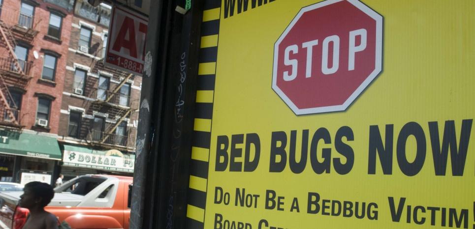 """Sur la pancarte : """"Stop aux punaises de lit dès maintenant. Ne soyez pas une victime des punaises de lit."""" © RICHARD B. LEVINE/NEWSCOM/SIPA"""