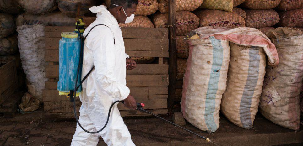 """Peste à Madagascar : """"La peur s'est installée. L'île manque de médecins"""""""