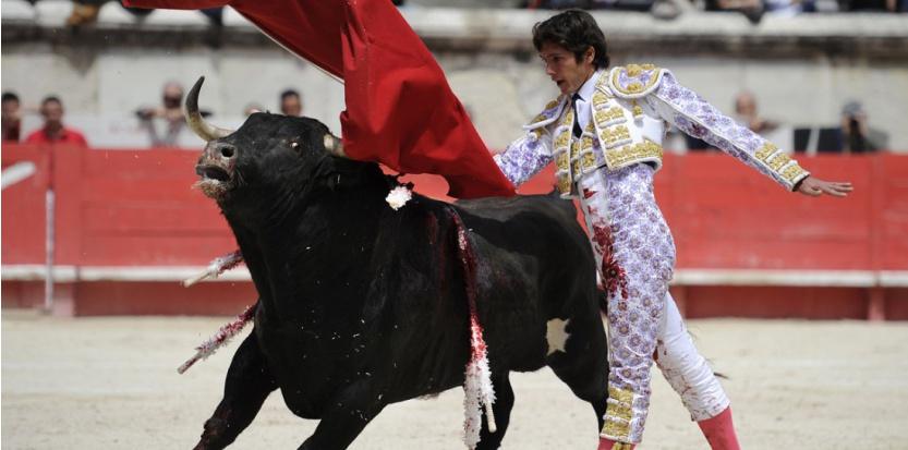 Le torero français Sebastien Castella en mai 2013. (PASCAL GUYOT / AFP)