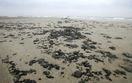Pollution aux hydrocarbures sur la plage de Palavas les Flots (Hérault) due au dégazage sauvage d'un cargo en Méditerranée, le 06 octobre 2004 - CLAVIERES VIRGINIE/SIPA