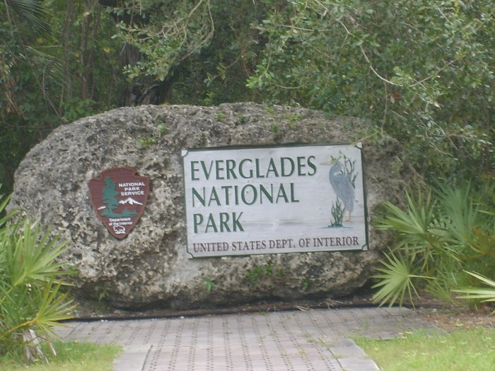 everglades_national_park_31_aou%cc%82t