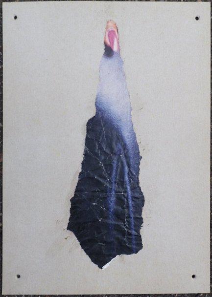 Einzelblatt (Fragment?) eines Ensembles: Decollage-Collage der Abbildung eines Fingernagels über blauem Grund, aufgeklebt auf Karton, Löcher zum Verknüpfen weiterer Elemente mit Bindfaden