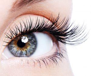 Lavish Lash Eyelash Extensions