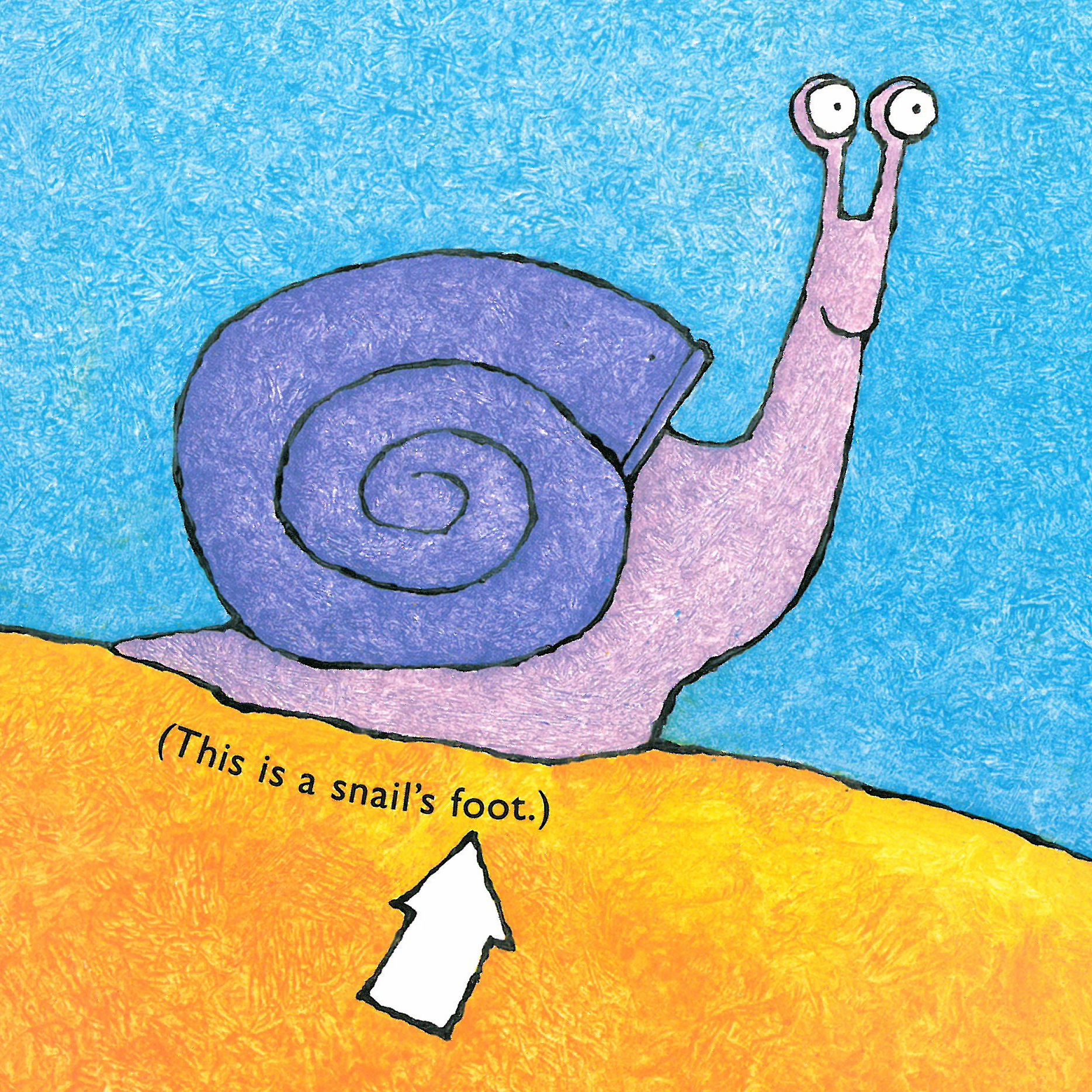 Math Picture Book Post 4 One Is A Snail Ten Is A Crab