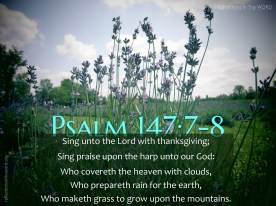 Psalm 147:7-8