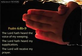 Psalm 6:8b-9