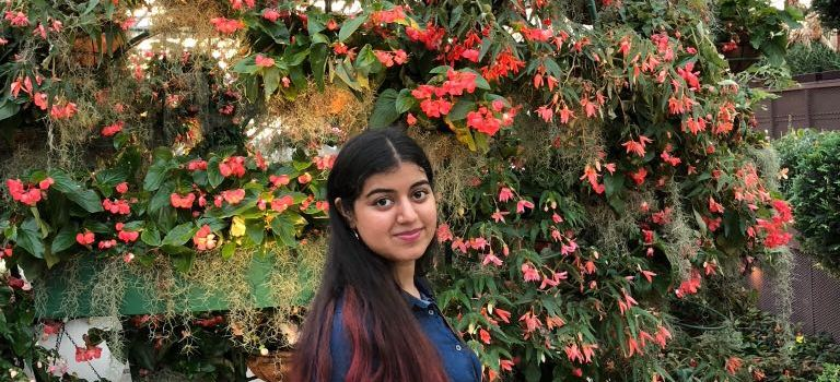 From the Editor's Mac – Ananya Grover