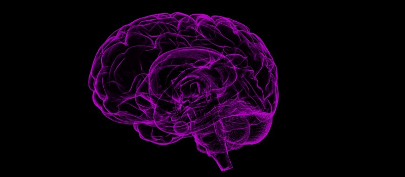 Neuroengineering- Syed Basit Naqvi
