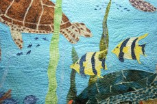 turtles_closeup1