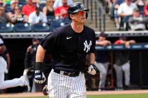 DJ LeMahieu - Yankees MVP 2019 (Charles Wenzelberg/New York Post)