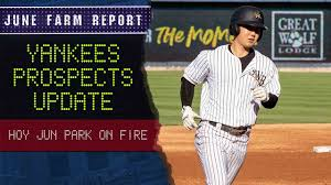 Hoy Park: Another Yankees Prospect Bites The Dust