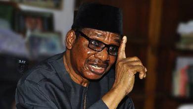 Itse Sagay Wants Buhari To Sack NDDC Interim Management Committee