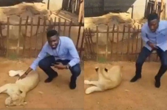 Timi Dakolo Runs Away From Photo Session As Lion Scares Him