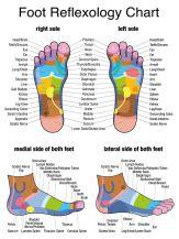 Foot reflexology chart map