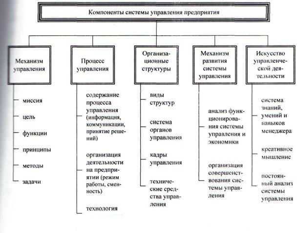 opțiuni caracteristicile organizației comerciale