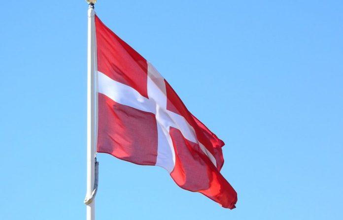 Danish Denmark Flag