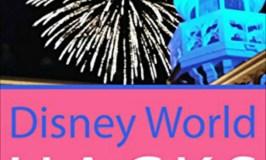 Refreshing Review (Saving money!): Disney World Hacks by Dia Adams