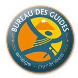 burodesguides-logo