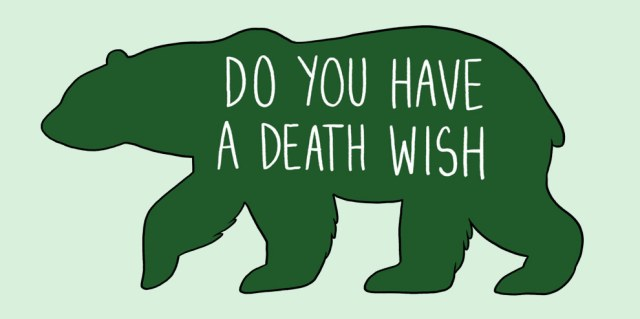 acariciar oso