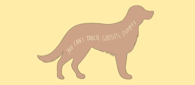 acariciar  perro fantasma