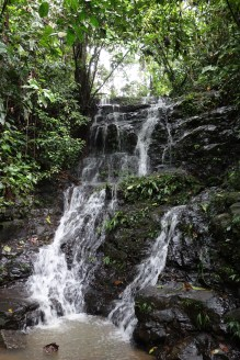 One of the various beautiful waterfalls