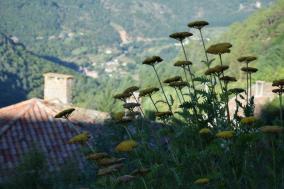 Regain-Mure-Ardeche-Nature25