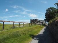 Rock of Cashel desde el camino de subida