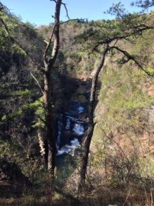 Georgia mountain stream