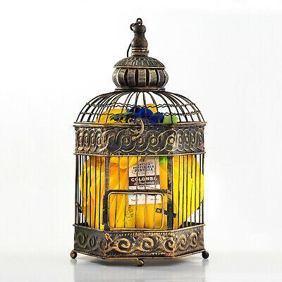 Confezione Regalo Pasquale con Colomba Artigianale 750gr - Fantasia di Pasqua