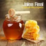 Jalea Real, conoce un néctar que vitaliza el organismo.
