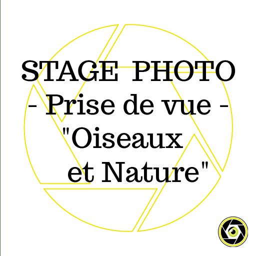 Stage Prise de Vue Oiseaux et Nature