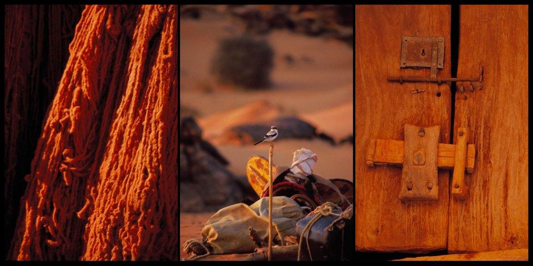 Visto en el deserto
